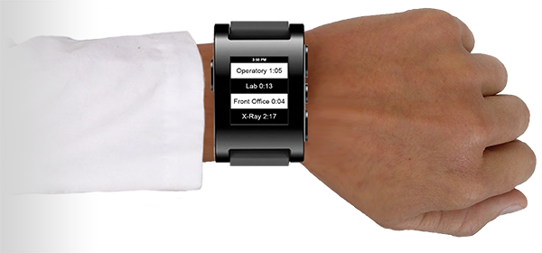 Pebble smartwatch works with DoctorMeow
